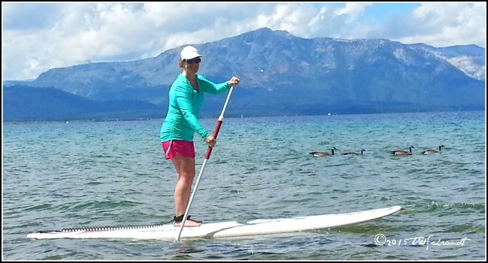 Paddling on Lake Tahoe, photo bombed by ducks
