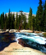 Tuolumne-Meadows-River