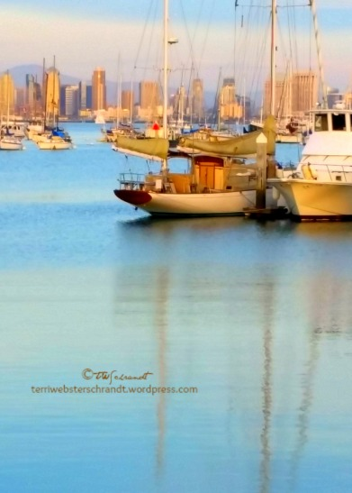 boats-in-San-Diego-marina