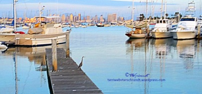 Heron-and-boats