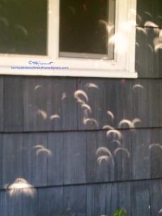Solar-Eclipse-Reflection