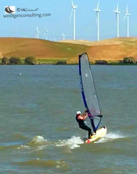 Terri-windsurf