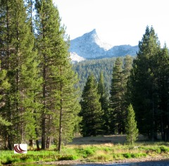 Unicorn Peak overlooks Tuolumne Meadows