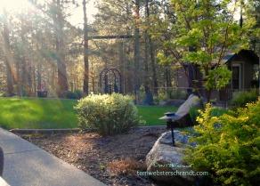 Backyard-Bliss