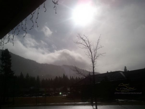 Foggy-Winter-Sunrise