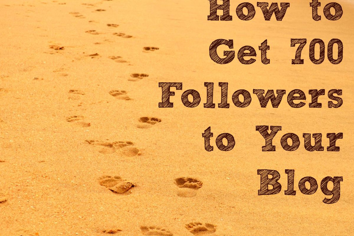 How-to-get-700-follower-to-your-blog