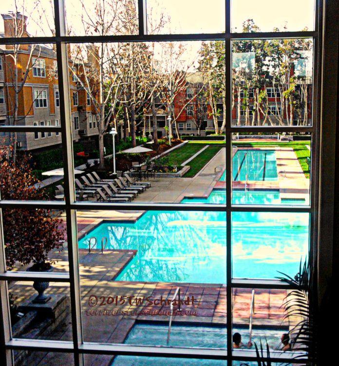 Apartment-Window-view