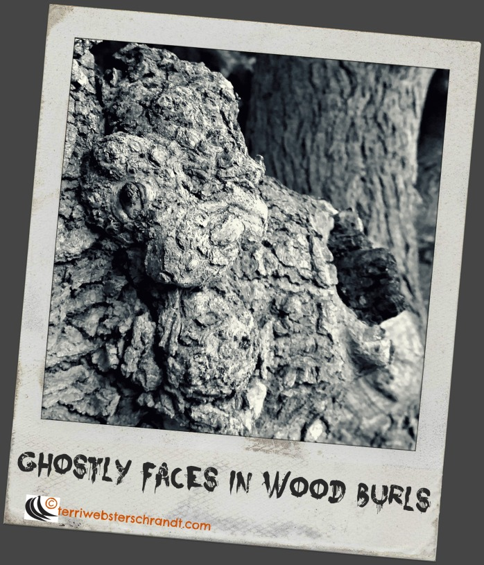 Ghostly Faces in Wood