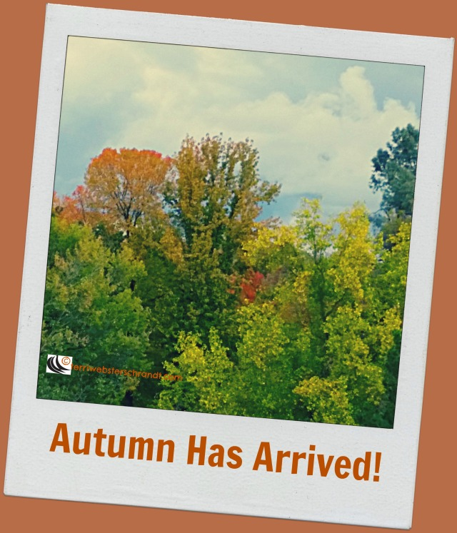 Autumn Has Arrived, like a postcard