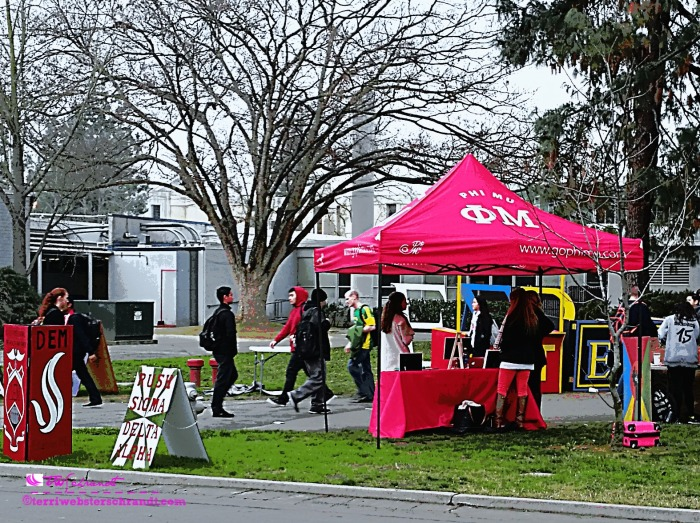 A bright pink tent beckons vibrant college students to explore leisure activities on campus.