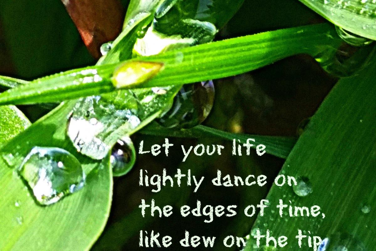 Let your life lightly dance like dew on the tip of a leaf