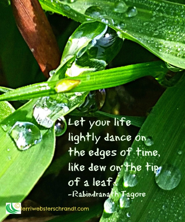Let your life lightly dance like dew on the tip of a leaf