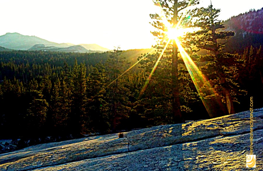 Half light of Tuolumne Meadows sunset