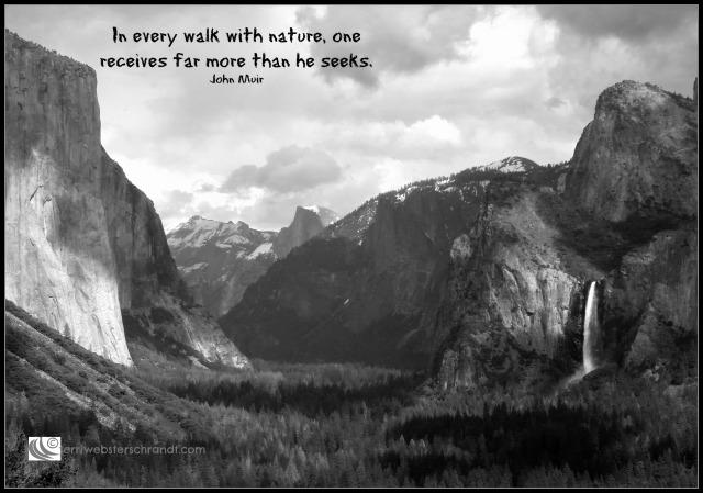 Yosemite_BW