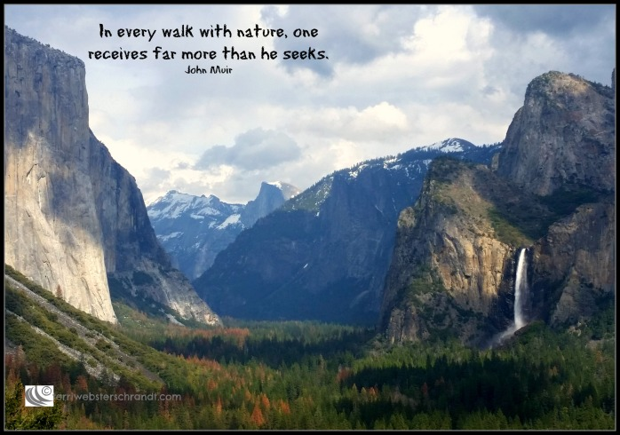 In every walk with nature...Muir