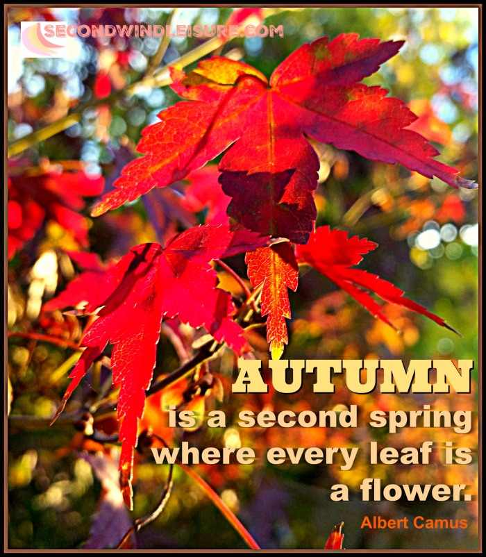 Autumn is a second spring where every leaf is a flower quote