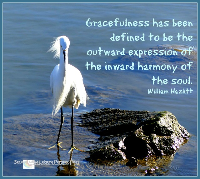 Gracefulness Quote