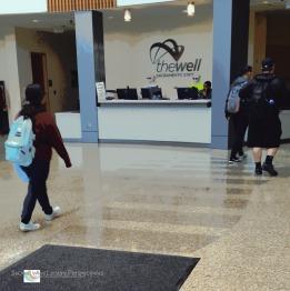 Terrazzo floor of The WELL lobby