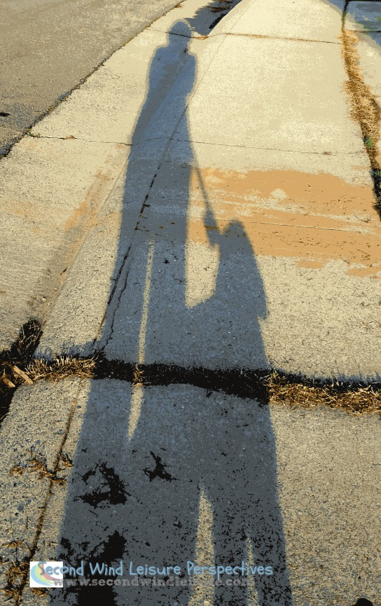 Shadow of the dog walker