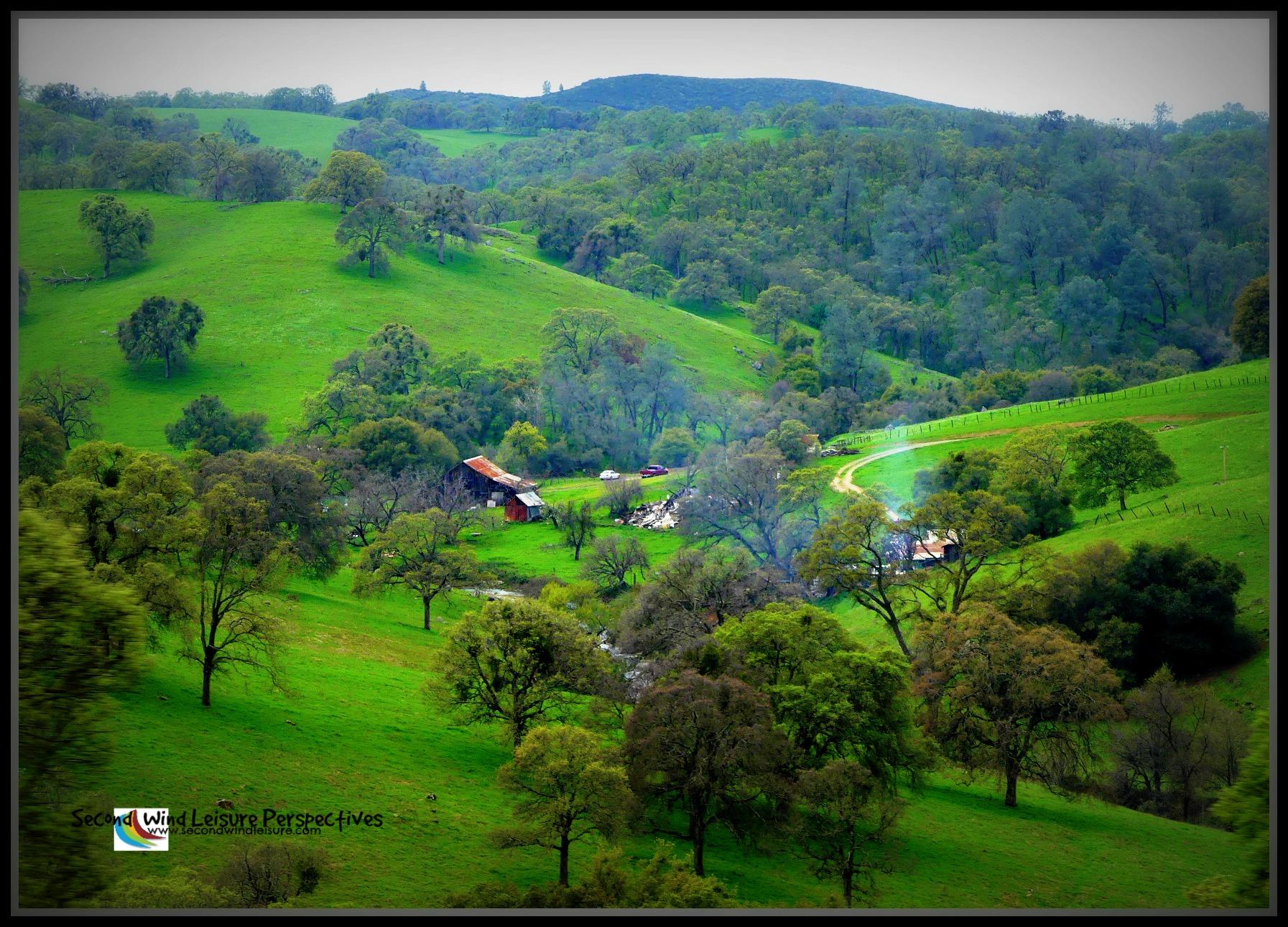 Mountain Greenery; Green Sierra foothills