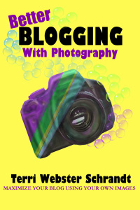 Better Blogging with Photography by Terri Webster Schrandt