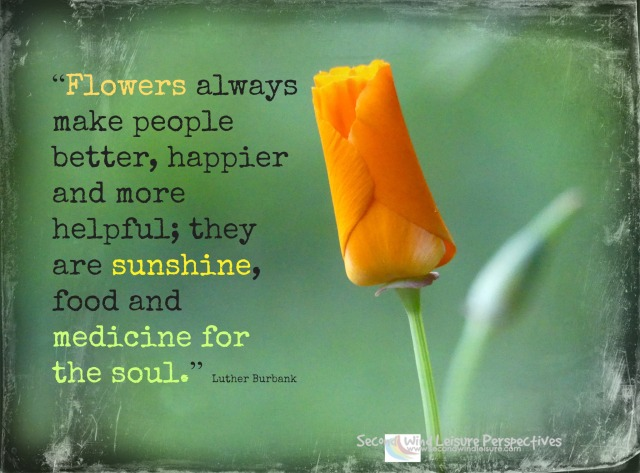 """Flowers always make people better, happier and more helpful; they are sunshine, food and medicine for the soul."" Luther Burbank"
