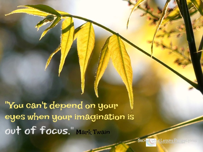 """You can't depend on your eyes when your imagination is out of focus."" Mark Twain"
