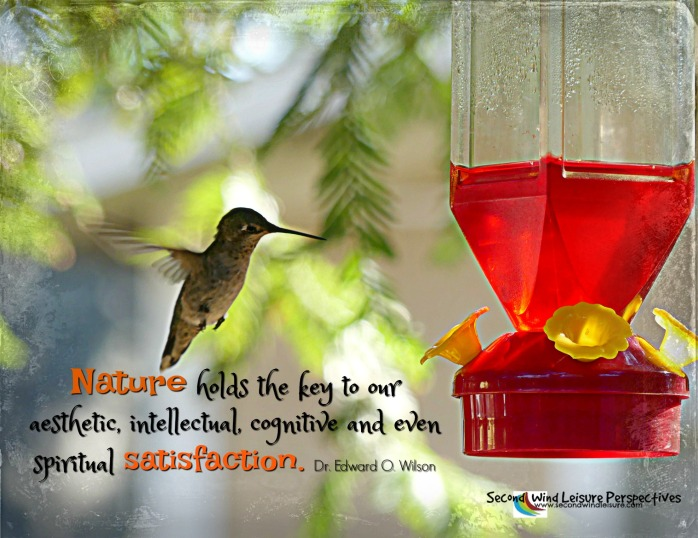 Nature holds the key to our...satisfaction. Quote