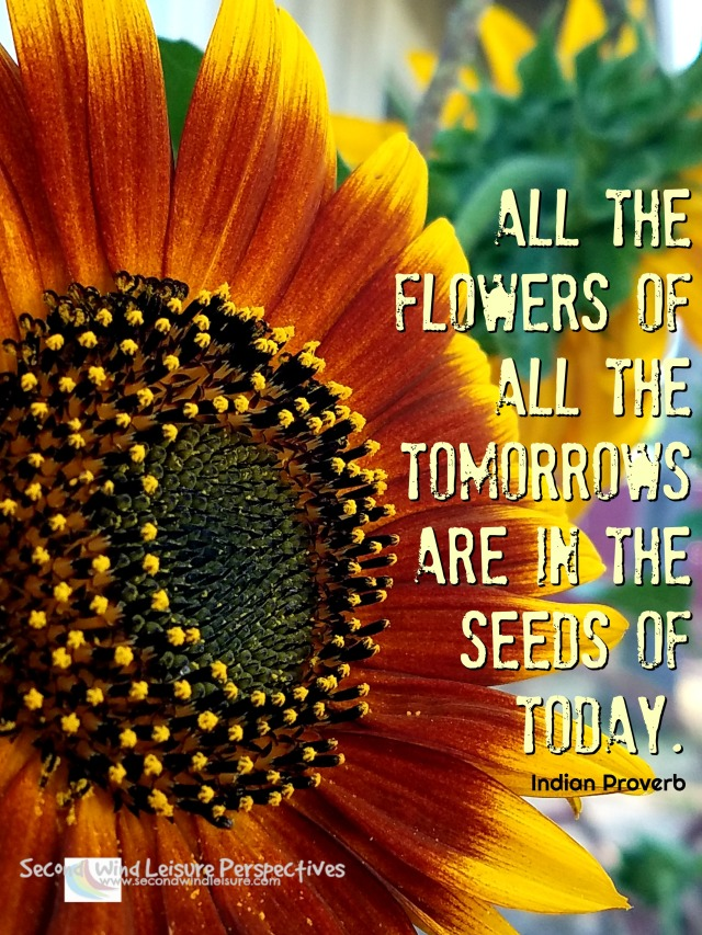 All the flowers of all the tomorrows are in the seeds of today, Indian Proverb