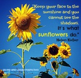 Sunflower quote by Helen Keller