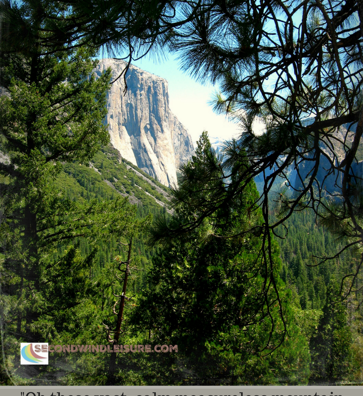 """Quote by John Muir """"Opening a Thousand Windows"""""""