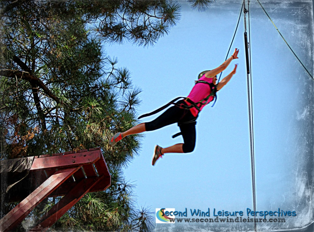 """Student takes the """"leap of faith"""" 40 feet in the air at the Peak Adventures Challenge Ropes Course in Sacramento."""