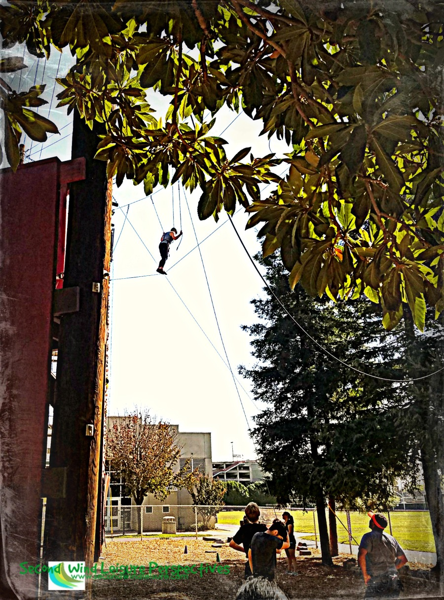 Students hanging out in the trees