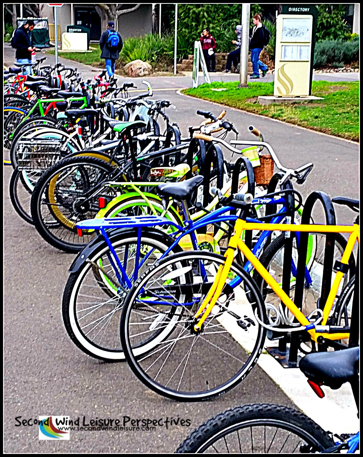 student bicycles line the sidewalk
