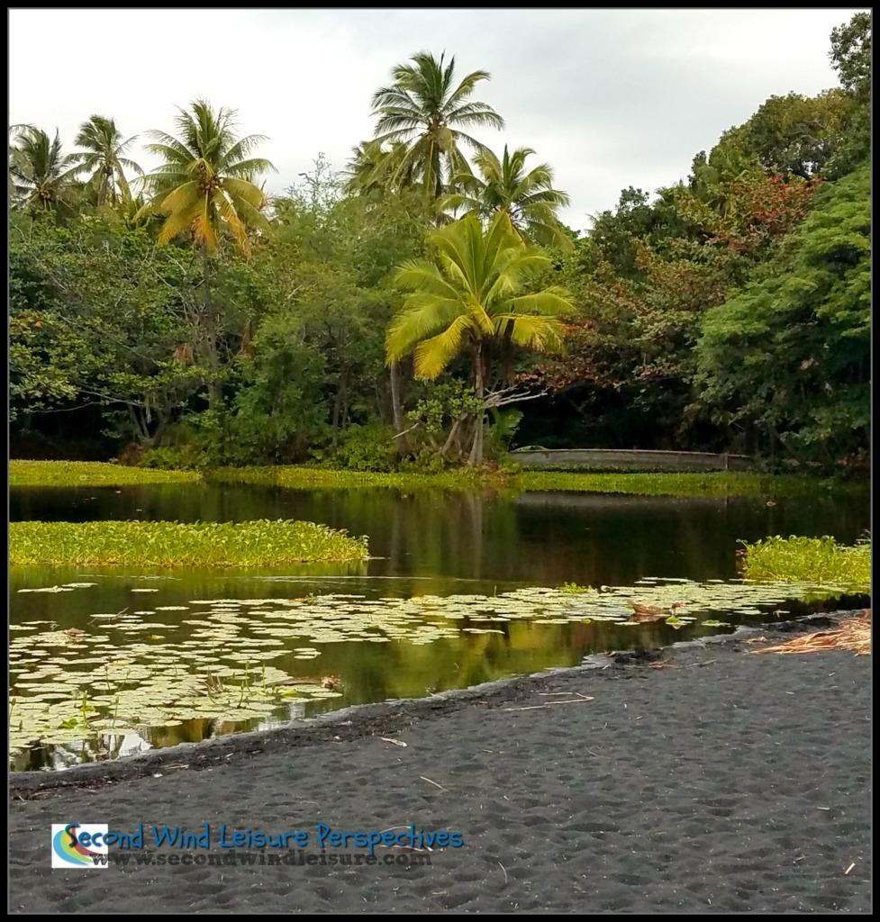 Black sand and lush palms