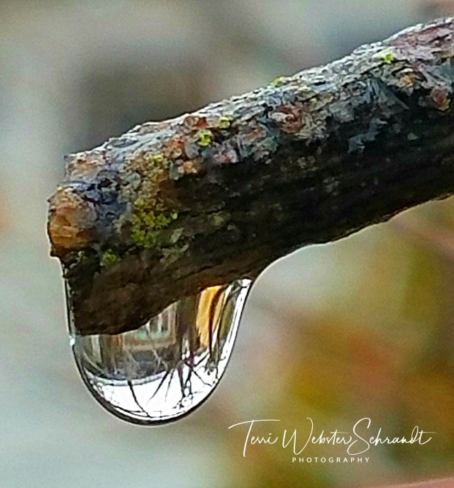 House in a droplet