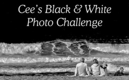 Black and white photo beach