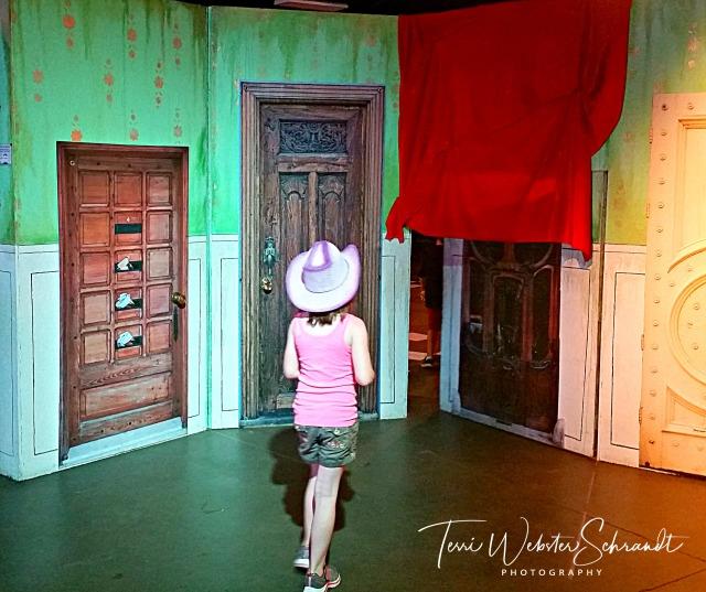 Del Mar Fair Doors