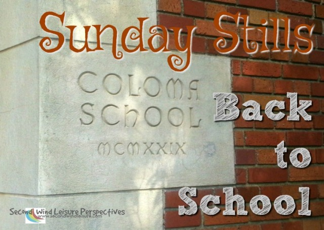 graphic for back to school
