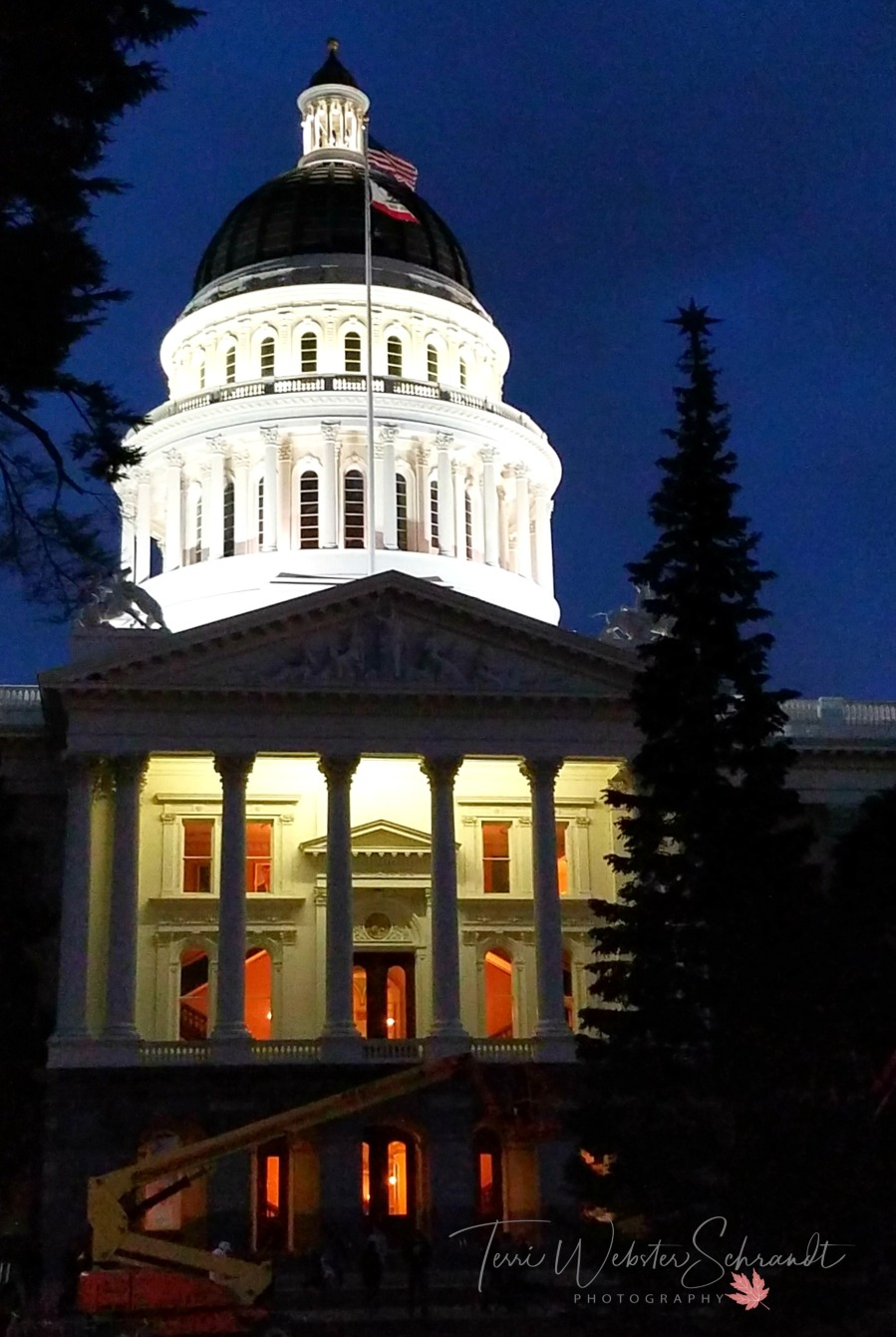 Cal State Capitol