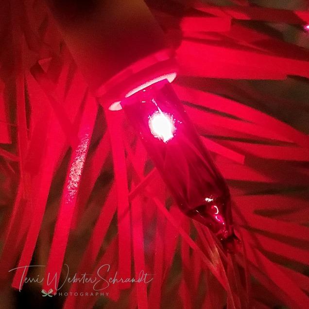 Red Christmas Light