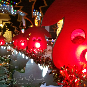 red piggy lights