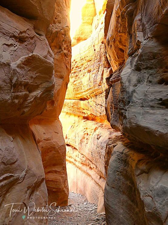 Slot Canyon Hike