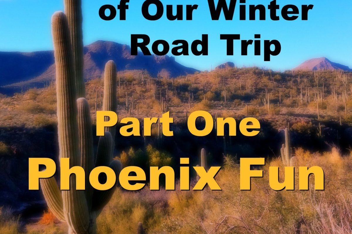 Phoenix Fun Graphic