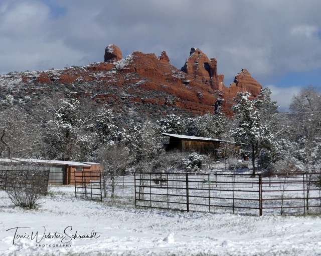 Snow on Red Rock of Sedona