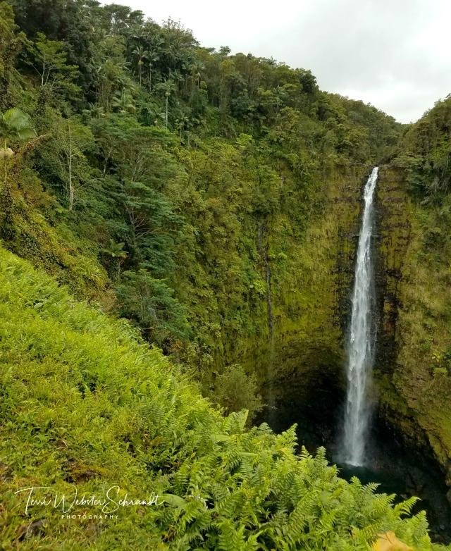 Akaka Falls near Hilo