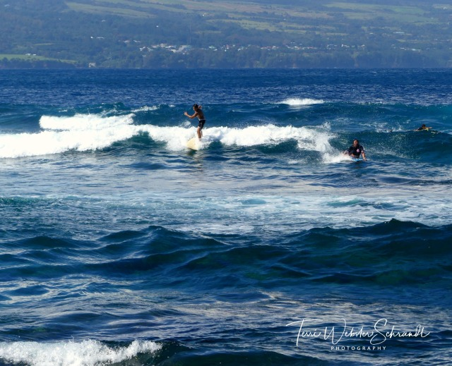 Hilo Bay Surfers