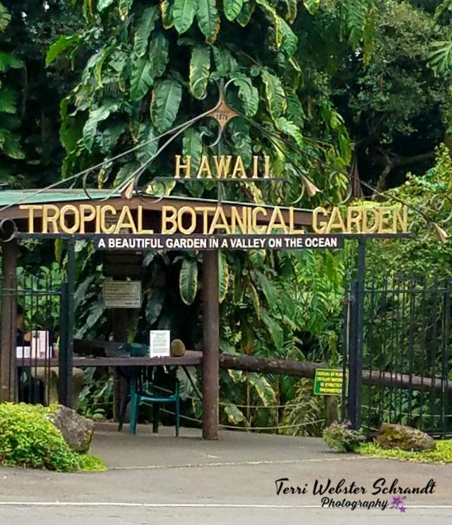 Gate to Botanical Gardens
