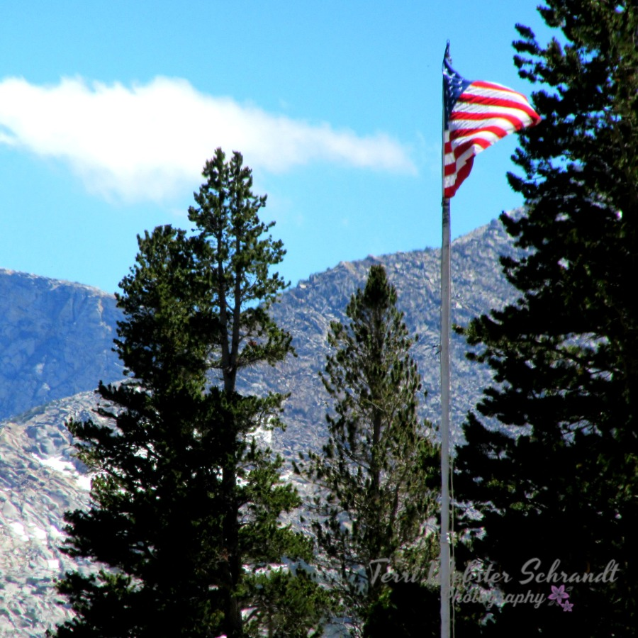 Great Outdoors American Flag