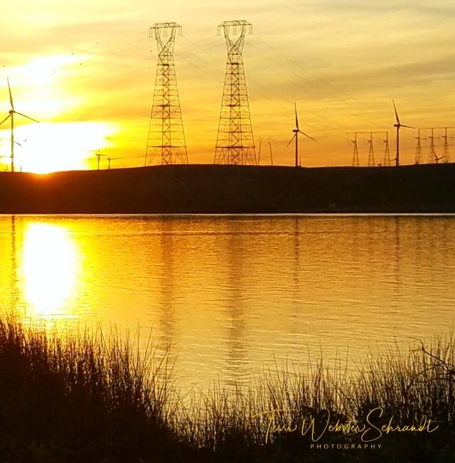 Molten Delta Sunset